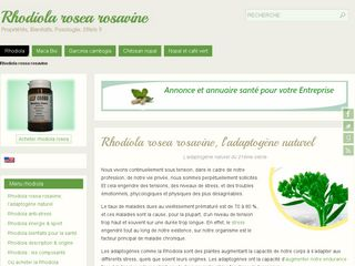 Rhodiola plante santé adaptogène